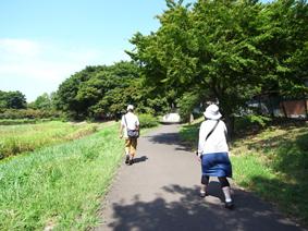 はけの道.jpg